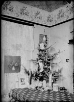 Image of WF 5335 - Christmas Tree - 1907-1910