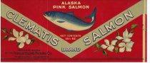 Image of Clematis Brand Alaska Pink Salmon