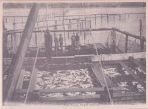 Image of Fish Trap, Puget Sound