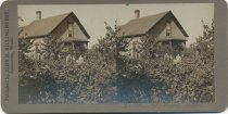Image of 2013.049.001 - Stereograph photo of family w/home berry patch