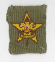 Image of Boy Scout Star Scout badge
