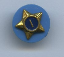 Image of 2012.117.113 - Pin, Award