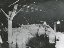 Image of codfish processing plant