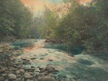 Image of Samish River