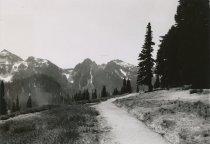 Image of Tatoosh Range from Paradise Valley