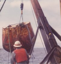 Image of D.XXV.126.002 - W.T. PRESTON lifting a snag