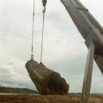 Image of Lifting a large long on to W.T. PRESTON