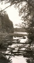 Image of WF 6849.001-.024 - Little Cranberry Lake