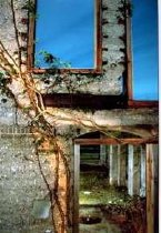 Image of Goekjian, Karekin - Doors and Windows at Dungeness
