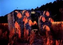 Image of Goekjian, Karekin - Untitled- Ginger at Chocolate Ruins