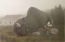 Image of Bunnen, Lucinda - Untitled (Broken Bull)