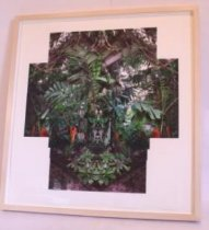 Image of Frazer, Jim - Botanical Dream VII