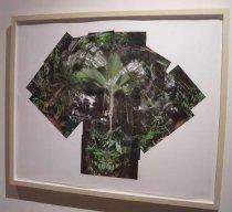 Image of Frazer, Jim - Botanical Dream VIII