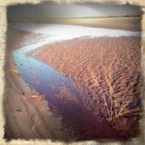 Image of Waterway, Boneyard Beach