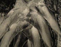 Image of Maloof, Gloria - Untitled