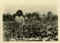Image of Central of Georgia Railway Records, Agricultural Department, Photographs - Print, Photographic