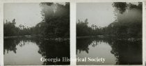 Image of Ossabaw Island and Torrey family papers - Stereograph