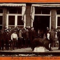 Image of Captured Bear - October 22, 1888