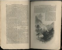 Image of A Forest Story : The Adirondack Woods and Waters - Richards, T. Addison (Thomas Addison), 1820-1900