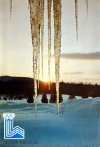 Image of XIII Winter Olympic Games, Lake Placid - February 1980 [graphic] -