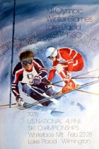 Image of 1978 U.S. National Alpine Ski Championships, Whiteface Mt. Feb. 23-28 Lake Placid, Wilmington [graphic] - Whitney, Robert W.