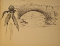 Image of [Untitled: Bridge and Flower] - Drawing
