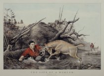 Image of The Life of a Hunter. 'Catching a Tarter'. - Print