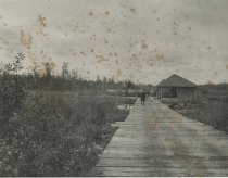 Image of The Carry at Marion River, Adirondacks, N.Y. - Collotype