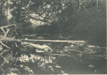 Image of Marion River at the Outlet of Utowana Lake, Adirondacks, N.Y. - Collotype