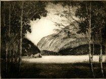 Image of Flowed Lands - Adirondacks - Print