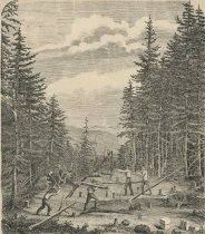 Image of On Blue Mountain. Timber Cutting For View of Snowy Mtn And Triangular Measurement. - Print