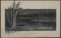 Image of In the Drowned Lands of the Raquette River - Painting
