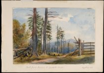 Image of Road From Corries [sic] To Spectacle Pond - Painting
