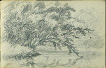 Image of [Raquette River] - Drawing