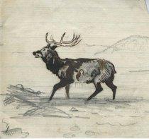 Image of Reindeer - Drawing