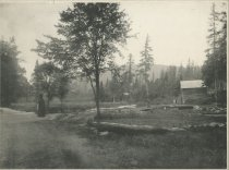Image of Marion River at the Bridge, Bassett's Carry, Adirondacks, N.Y. - Collotype