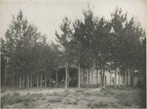 Image of The Grove House, Head of Long Lake, Adirondacks, N.Y. - Collotype