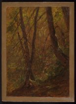 Image of Untitled: Woodland Scene - Painting