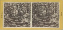Image of 45. The Pleasant Way. - photo - stereo; mounted; sepia