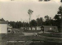 Image of A Woodland City, Conifer, N.Y. No.22. - Print, Gelatin Silver