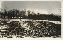 Image of Conifer, N.Y. - Print, Real Photo Postcard