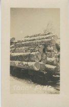 Image of 8000' Pine - Print, Real Photo Postcard