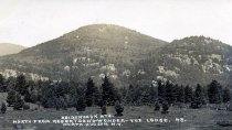 Image of Adirondack Mts.;Nippletop Mt. Robertson's-Wonder-Vue-Lodge, North Hudson, N.Y. 48. - Print, Real Photo Postcard