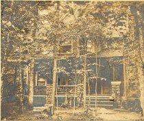 Image of Wildwood. - Print, gelatin silver
