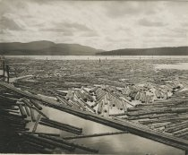 Image of Logs in Raquette Pond - Print, Photographic
