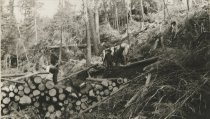 Image of Logs On A Skidway - Print, Photographic
