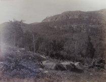 Image of 43. Adirondacks. Road to Blue Mountain Lake. - Print, Albumen