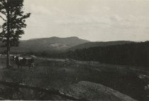 Image of Wood Farm - Print, Photographic