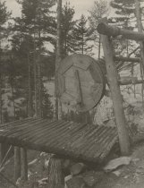 Image of Wooden Platform in Forest - Print, Photographic