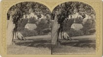 Image of Church of St. Sacrament - Stereoview